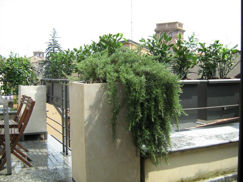Progettazione giardini e terrazzi for Giardini sui terrazzi